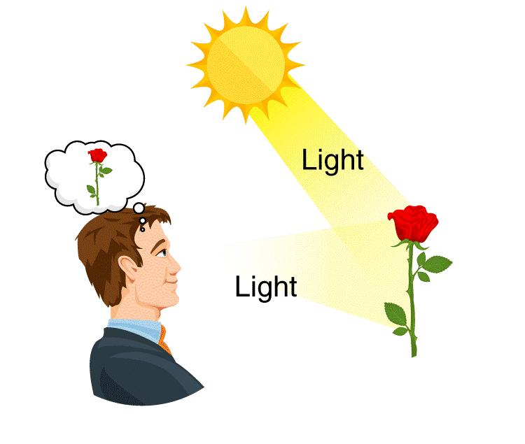 φως και όραση